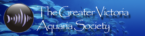The Greater Victoria Aquaria Society